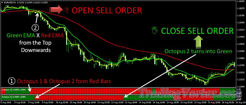 Forex Octopus System Sell Signal Rules
